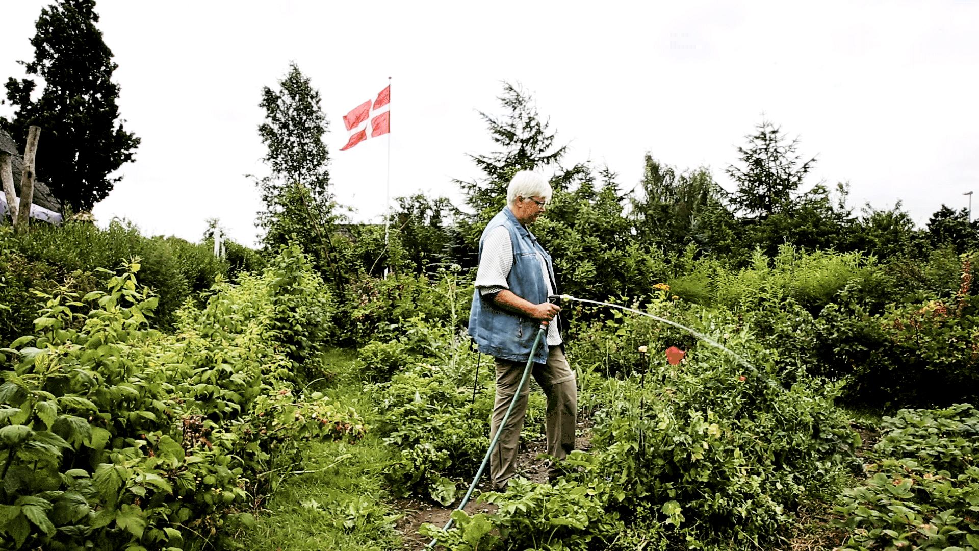 """VÆKST Ella Hilker synes, at københavnernes taghaver er et mærkeligt fænomen. """"Kom dog ud i den rigtige natur,"""" som hun siger. Foto Jonas Pryner, Zetland"""